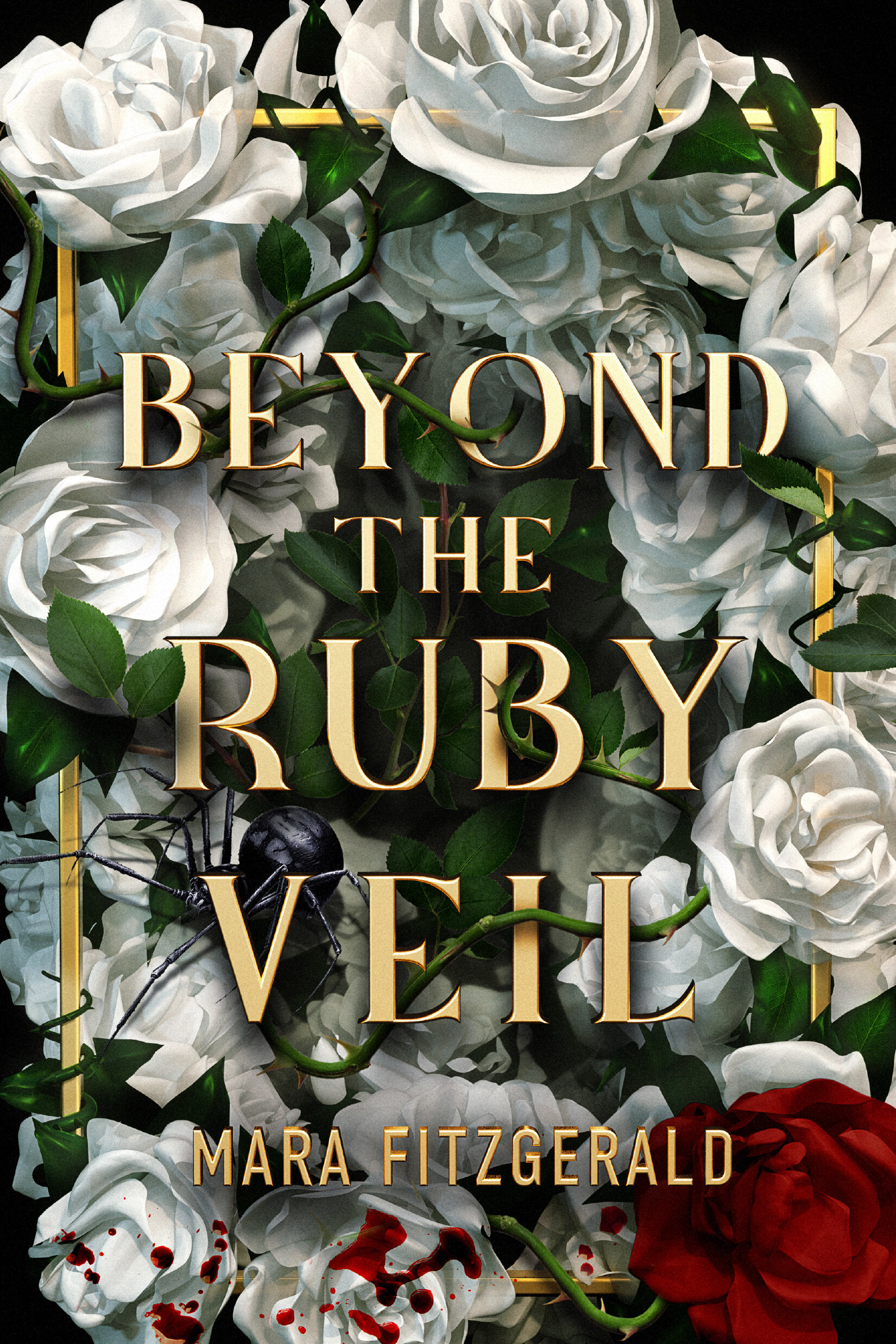 beyond the ruby veil cover